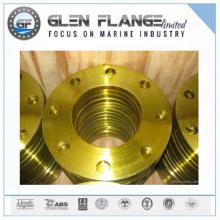 Metal Forging Flange