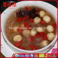 Pianta goji goji benefits tibetan goji berries