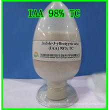 Hormona vegetal Indole-3-Yl Ácido acético Iaa 98% Tc