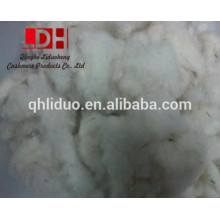 wool noils from China