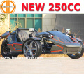 Bode Quality Assured Gas Trike Roadster Ztr 300cc for Sale Bc