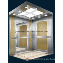 Germmany Technology Passenger Elevator with Luxury Cabin (JQ-B021)