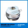 High Quality Air Vent Valve (BW-R10)