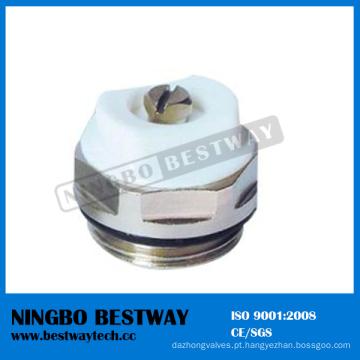 Válvula de ventilação de ar de alta qualidade (BW-R10)