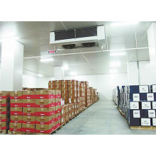 High Quality Food Cold Storage Room, Cold Storage Room for Meat