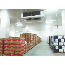 Sala de armazenamento frio de alta qualidade do alimento, sala de armazenamento frio para a carne