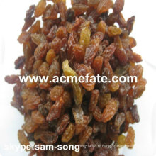 AAA Grade 95% Xinjiang Brown Raisin
