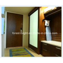 China Marriott Hotel Barn Type Sliding Glass Door for Hotel Bathroom