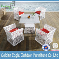 Hot Sale PE Rattan Garden Dining Set