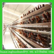 Diseño de casa de pollo para jaula de pollo para nigeria / africa