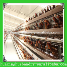 Chicken house design for chicken cage for nigeria/africa