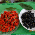 Freeze Dried black goji berry
