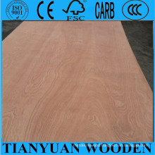 Red Wood Veneer Plywood/Red Wood Commercial Plywood