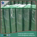 galvanized welded wire mesh pvc welded mesh