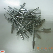 Rivet en aluminium scellé rivet / pop