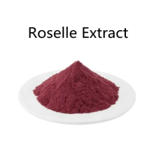Buy online active ingredients Roselle Extract powder