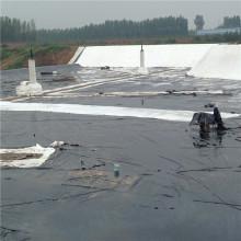Tela de filtro de geotextil de tanque de aceite de alta calidad