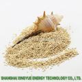 fabricante granos de mazorca de maíz abrasivo