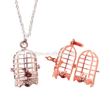 Fashion Long Bird Cage Locket Diffuser Necklace
