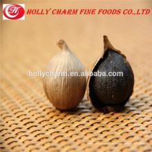 Verde agrícola ajo negro orgánico