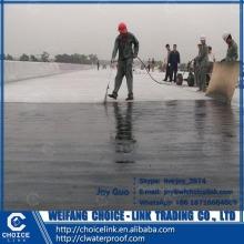 for building non-cured rubber bituminous waterproof paint