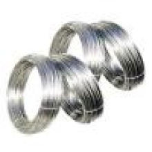 Stainless Steel Wire (YQ-001)