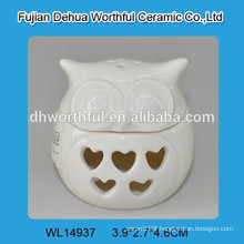 Unique design ceramic owl ornaments with led light for home decoration
