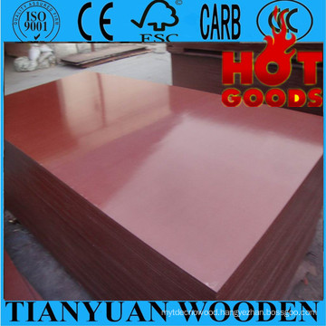 Water-Proof Film Faced Scaffolding Plywood for Construction