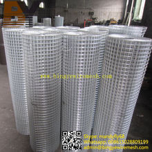 Stainless Steel Hot-Dipped Galvanized Welded Wire Mesh