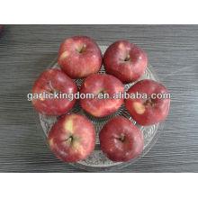 Frische Huaniu Apfel 100-125 18kg