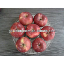 fresh Huaniu Apple 100-125 18kg
