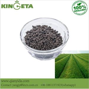 Agriculture crop growth carbon based fertilizer