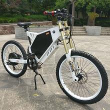 Benutzerdefinierte CE-geprüfte Fat Tire E-Bike