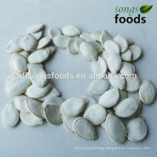 Vegetable Seed Pumpkin Seeds New Crop