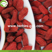 Commercio all'ingrosso Super Food Dried Berry Goji