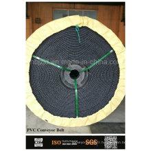 Bande transporteuse PVC souterraines de mines de charbon