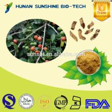 Best quality of 10:1 Salacia reticulata P.E. powder