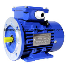 Industry Electric Motor for Exporting