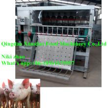 Máquina de depilação de porco / máquina de remoção de pêlos de porco / porco abate máquina