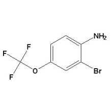 2-Bromo-4-Trifluorométhoxyaniline N ° CAS 175278-17-8