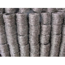 Electro Galvanized Iron Bared Wire in Good Quality