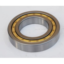 Cylindrical Roller Bearing (NJ219)
