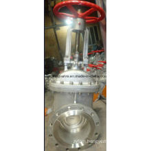 Rising Stem Flange End Gate Valve RF with Stainless Steel