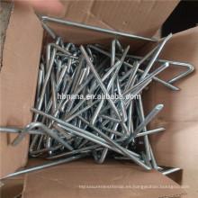 Clavijas de la tienda de acero galvanizado / estacas de jardín / clavijas de tienda de acero inoxidable Clavijas de la tienda de hierro para carpa grande