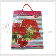 Flower Design Paper Bag (KG-PB012)