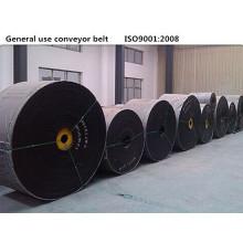 EP250 Bandas de transportadoras de contrachapado múltiple