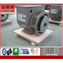 220kw / 275kVA 3-фазные бесщеточные генераторы на частоте 50Hz / 60Hz (DG314DS)
