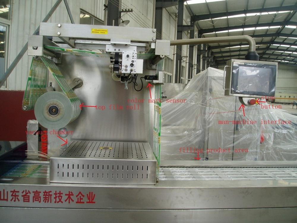 Fruit Depth Mouldable Robot Tensile Packing Machine