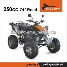ATV 250CC motor de EGL EEC
