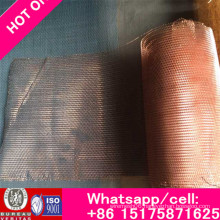 Hot N Sale of 99.95% Molybdenum Mesh for Sale